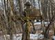 Boudníkův kříž